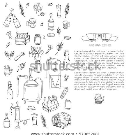 Cerveza objetos establecer dibujado a mano vector completo Foto stock © robuart