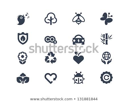 Photo stock: Coccinelle · feuille · logo · icône · vecteur · élément