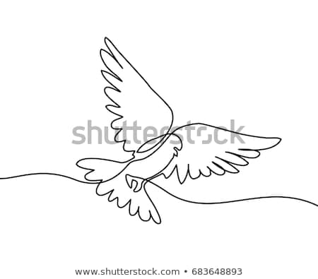 Colombe ligne art dessin pigeon vecteur Photo stock © ESSL