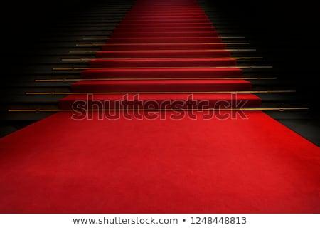 Rood trap 3d illustration geïsoleerd witte business Stockfoto © montego