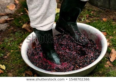 Férfiak érett szőlő fitt csizma sajtó Stock fotó © Illia