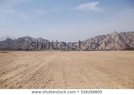 Arizona · Wüste · Berg · Frühling · orange · Reise - stock foto © diomedes66