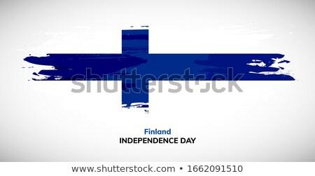 Grunge borstel Finland vlag witte geïsoleerd Stockfoto © evgeny89