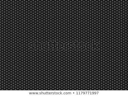 White isometric grid with vertical guideline on horizontal black a4 size Stock photo © evgeny89