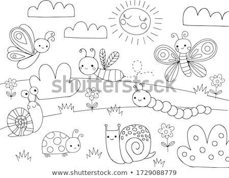 Page cartoon escargot livre de coloriage enfants Photo stock © natali_brill