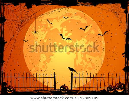grungy halloween background with pumpkins bats and full moon stock photo © wad