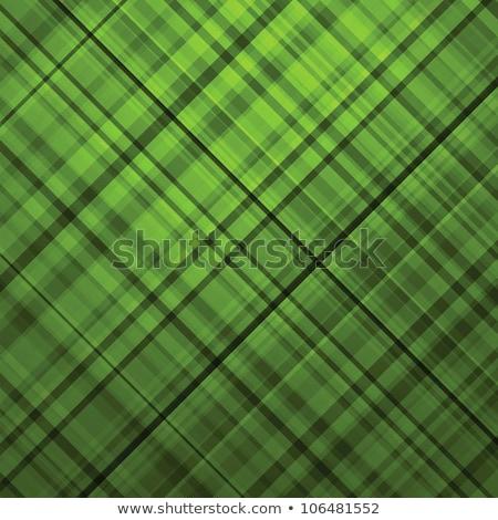 Wallace tartan green background. EPS 8 Stock photo © beholdereye