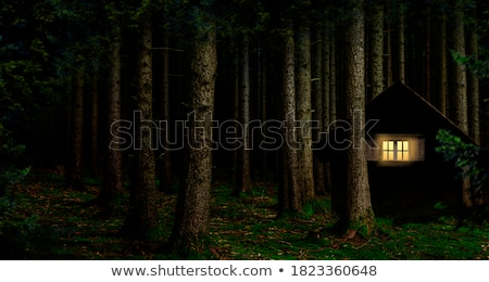 dark and lonely Stock photo © dolgachov