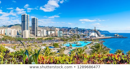 Santa Cruz de Tenerife, Spain Stock photo © neirfy