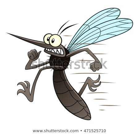 cartoon mosquito stock photo © dvarg