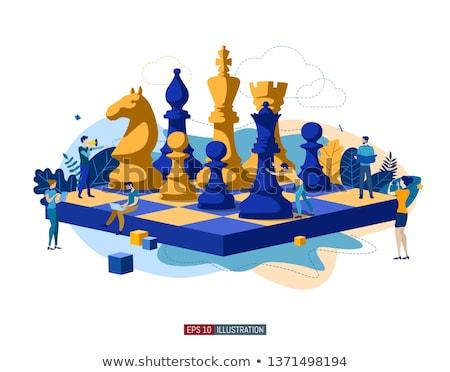 White and Black Chess Rook, vector illustration  Stock photo © carodi