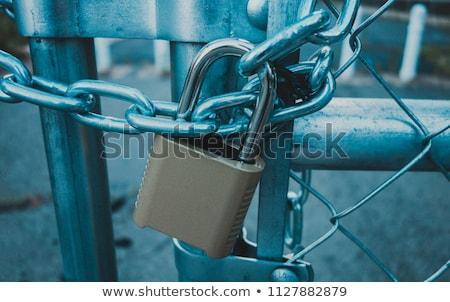 Gate lock Stock photo © trgowanlock