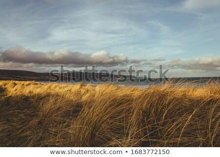 Zee afbeelding hoogland hemel water natuur Stockfoto © Kirschner