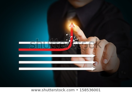 Profit Target Shows Market And Trade Income Stock photo © stuartmiles