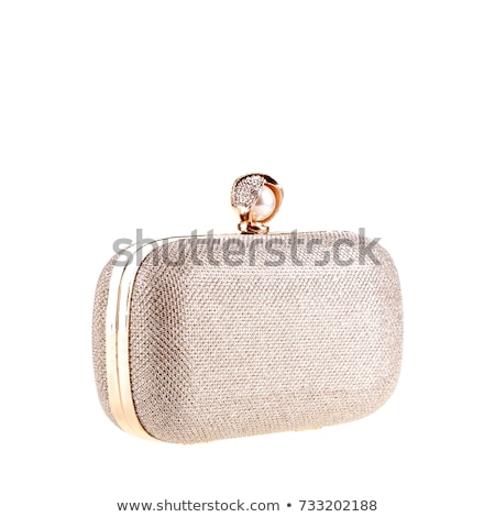 Modern silver clutch purse Stock photo © Discovod