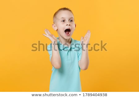 Expressions - five year old boy Stock photo © 805promo