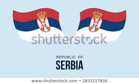 Ayarlamak düğmeler Sırbistan parlak renkli Stok fotoğraf © flogel
