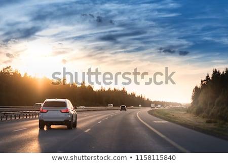Nacht snelweg auto verkeer schemering natuur Stockfoto © hanusst