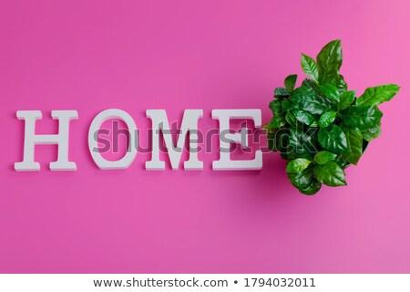home insurance on green billboard stock photo © tashatuvango