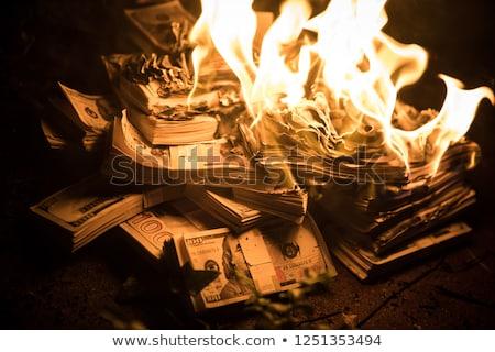 Soldi brucia euro fiamme fuoco Foto d'archivio © stevanovicigor