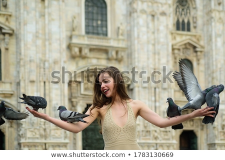 the girl and the doves stock photo © nizhava1956