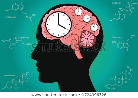Biological Clock Stock photo © Lightsource