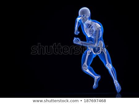 lopen · 3D · skelet · man · sport - stockfoto © Kirill_M