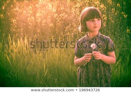 menina · campo · leão · menina · feliz · coroa · amarelo - foto stock © fotoaloja