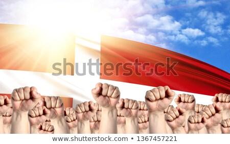 lázadás · tiltakozás · ököl · kiemelt · levegő · férfi - stock fotó © stevanovicigor