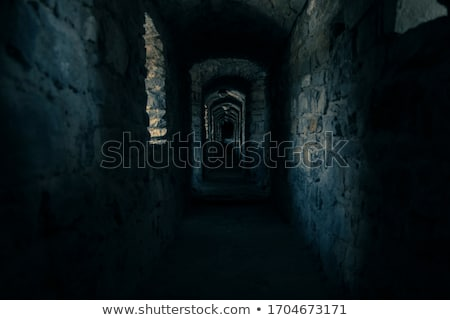 Dungeon in the twilight Stock photo © tilo