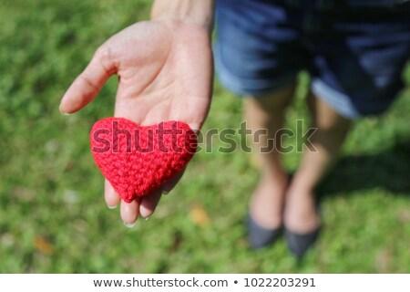 rojo · corazón · hierba · forma · de · corazón · hierba · verde · primavera - foto stock © compuinfoto