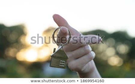 kéz · ujj · ház · ikon · üzlet · otthon - stock fotó © cherezoff