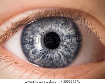 Stock photo: abstract detailed human eye