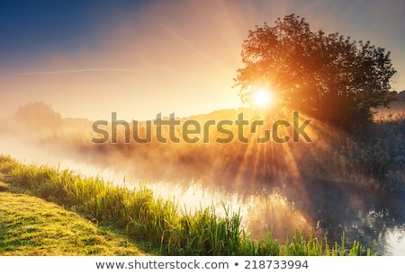 Red fog in the light of the sun  Stock photo © Kotenko