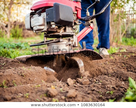 Man preparing garden soil with cultivator tiller Stock photo © stevanovicigor