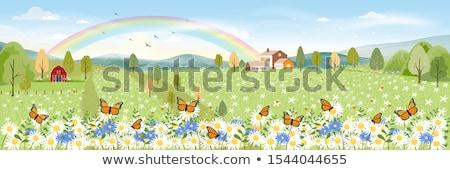 цветок · весны · пейзаж · фон - Сток-фото © cienpies