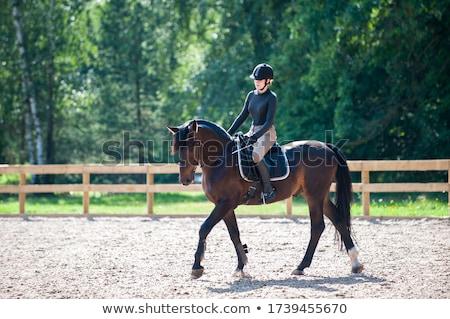 Woman in Riding School Stock photo © artfotodima