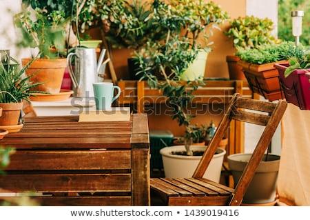 Belo terraço varanda café tabela cadeira Foto stock © artjazz