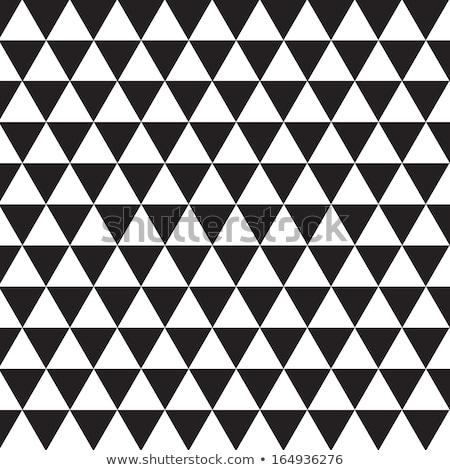 Vector naadloos zwart wit mozaiek patroon textuur Stockfoto © CreatorsClub