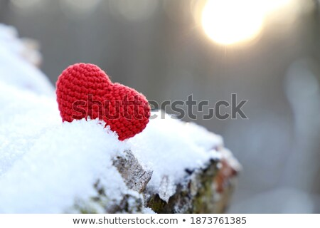 Red heart in the snow with sunshine stock photo © viperfzk