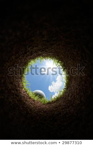 Golf Hole With Ball Inside Stock photo © albund