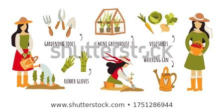 gardening concept work tools plants stock photo © janpietruszka