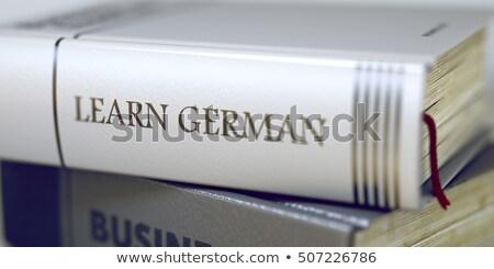 Libro título espina aprender holandés 3D Foto stock © tashatuvango