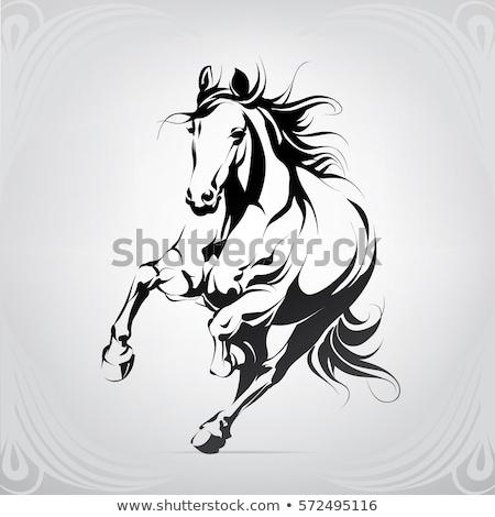 running horse black icon silhouette vector illustration illustr stock photo © nikodzhi