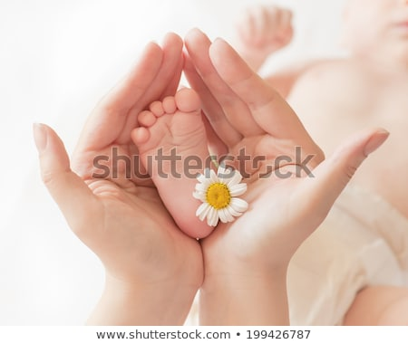 Childrens feet with a flower Stock photo © IS2