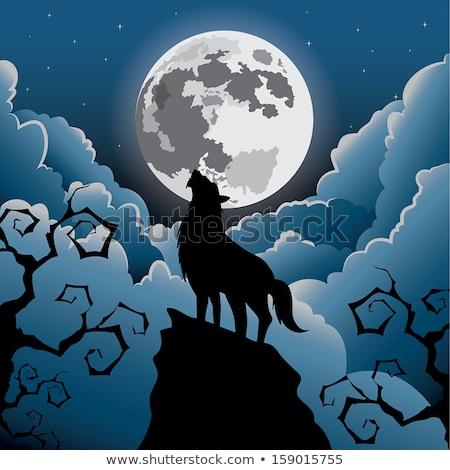 rajz · tájkép · farkas · hold · felhő · illusztráció - stock fotó © rwgusev