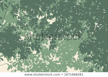 tropikal · palmiye · yaprağı · sınır · vektör · yaz · hurma · ağacı - stok fotoğraf © gladiolus