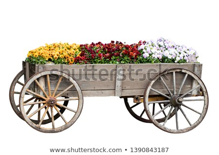 a wooden cart on white background stock photo © bluering