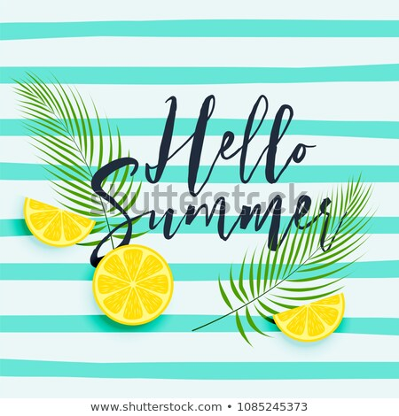 Friss citrom levelek nyár étel Stock fotó © SArts