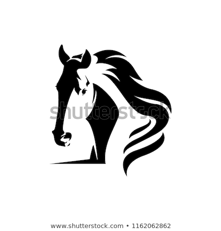 Foto stock: Caballo · silueta · animales · detallado · gráfico · diseno